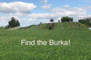 Burkainitiative Wettbewerb – Concours